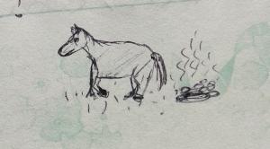 June 1996 - Horse