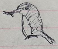 June 1996 - Kingfisher