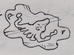 July 1996 - Squid