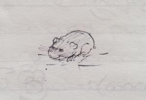 September 1996 - Hamster