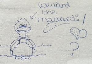 November 1996 - Wellard Mallard