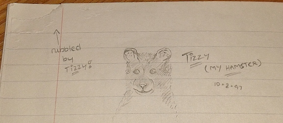 February 1997 - Tizzy