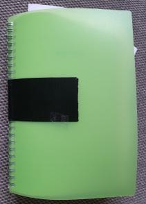 20-02-01 Green diary